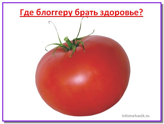 soveti-bloggery